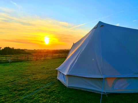 Bell Tent on Anglesey on  5 acre smallholding