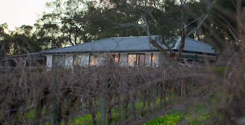 Barossa house in the vines & stunning valley view!