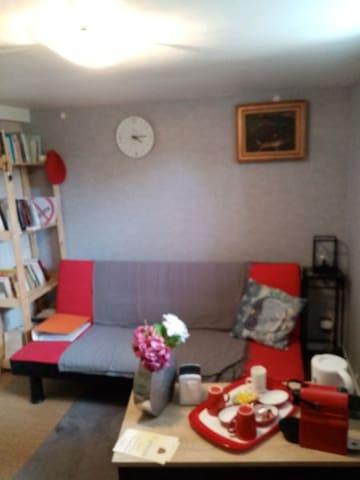 Petit salon , bibliothèque , canapé convertible , bouilloire , machine à café nespresso etc..