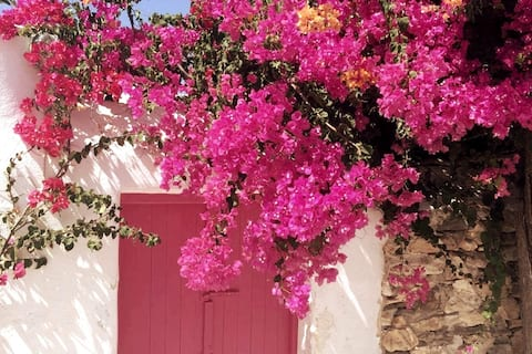Lovely studio with patio downtown Aegina