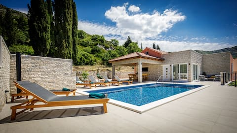 Villa Pajkan vacation house with pool