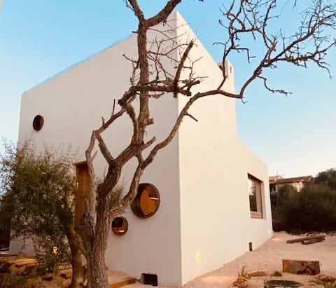 Design beach house