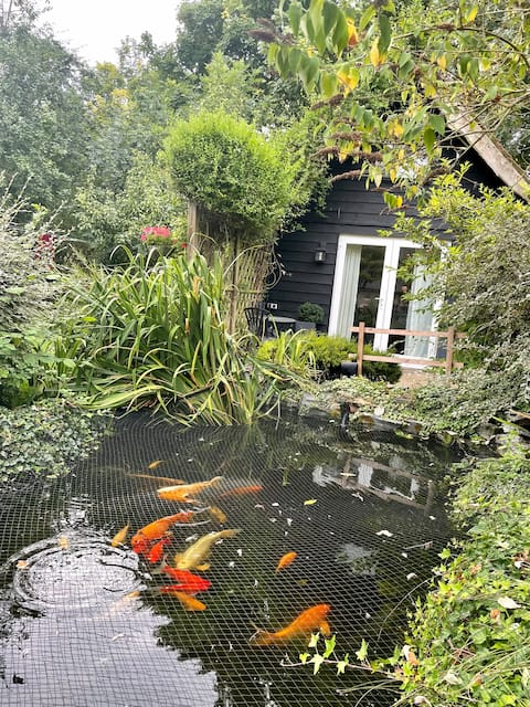 Self contained country garden lodge, 1 bedroom.