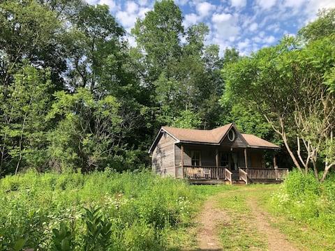 Dreamy Catskills Cabin on 15 Acres w/ Pond
