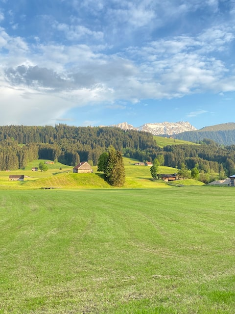 Brand new apartment just a few kilometers from Appenzell