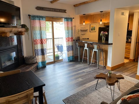 New listing! Updated 1BR Rockies Condo - Walkable!