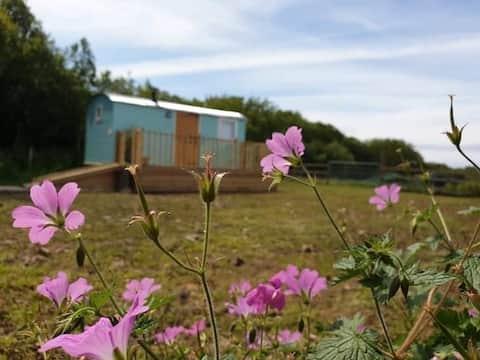Belle cabane de bergers entièrement équipée.