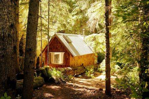 East Sooke Studio: Private Rainforest Cabin