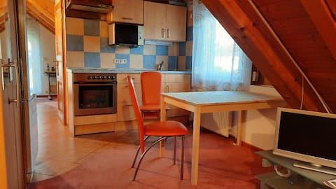 Schönes 1-Zimmer Apartment in Heilbronn-Sontheim