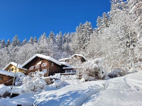 Winter-Romantik-Chalet im Skigebiet, Nähe ÖV