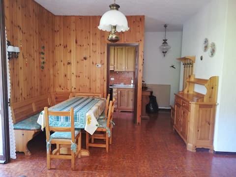 Tipico appartamento di montagna con camino