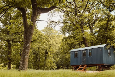 Delightful 1- bedroom Shepherds Hut