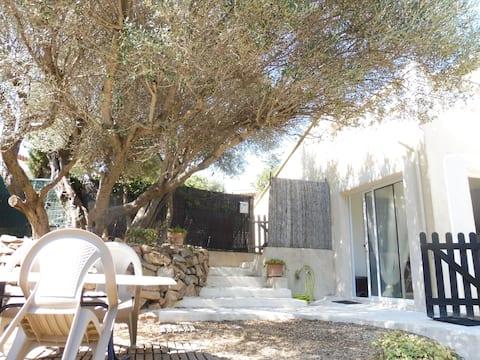 Ombre des oliviers, calme et sérénité, proche mer