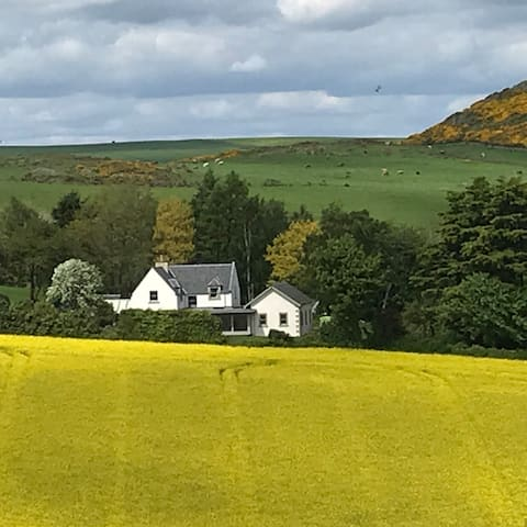 Brunton Hill