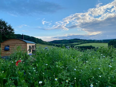 Shepherds Hut - Kent North Downs with Hot Tub