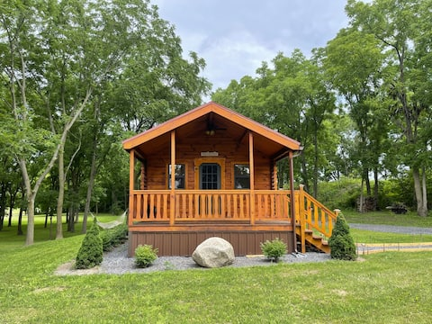 Cozy Cabin get away to Finger Lakes Wine Country