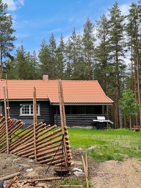 Trivelig hytte i naturskjønne omgivelser