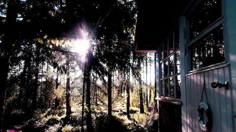 Pikku-Mökki metsän siimeksessä!