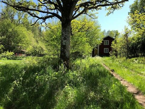 Classic Swedish Cottage in beautiful area