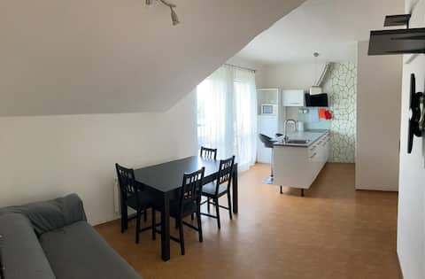 Apartment close to city center and Konopište