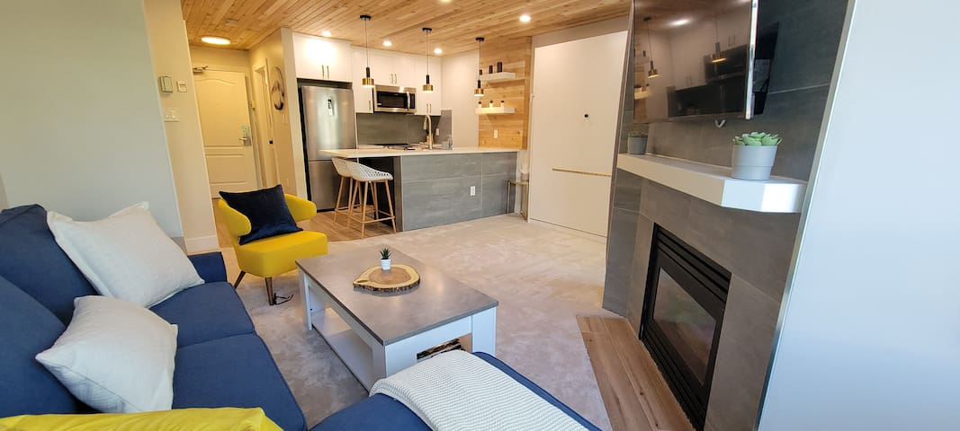Our spacious & cozy studio overlooking the beautiful & bustling Whistler Village Stroll. Unique cedar ceiling for that cabin feel. Sleep 4 on the pull out queen murphy bed and queen sofa bed with a fully stocked kitchen and spa like bathroom!