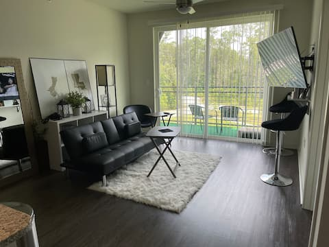 Luxurious Downtown 1 Bed Room Apartment with pool!