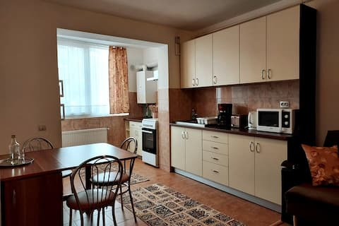 Spacious quiet flat, minutes away from Cluj