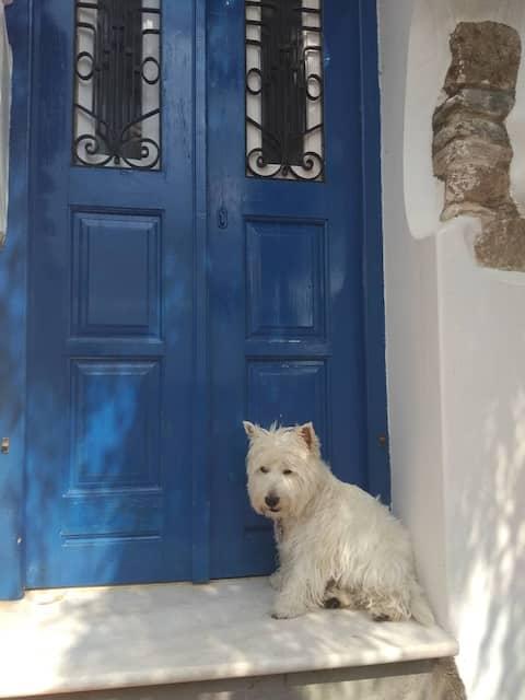 Blue & White: An Absolute Aegean dream house