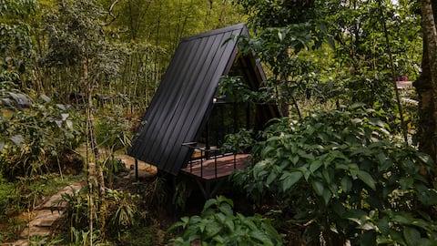 Encantadora tiny house con piscina natural privada