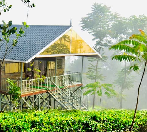 Peaceful Mountain Cottage in Vagamon