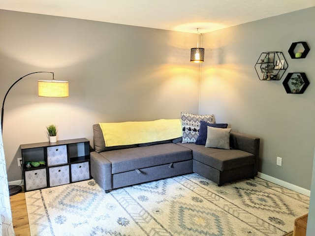 Small TV room with sleeper sofa