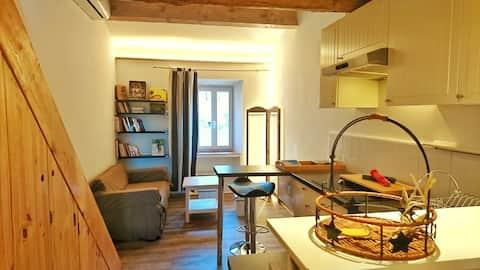 Studio cocoon with mezzanine in Provencal village