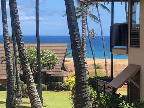 Aloha! you will love to stay at our tiny studio!