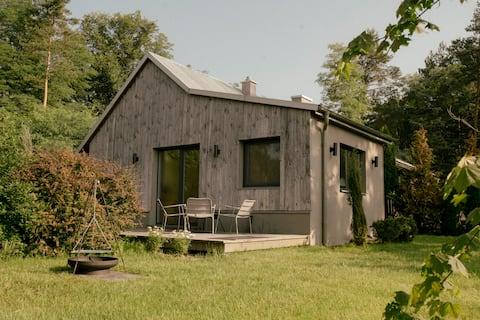 Szyszka_nowoczesny domek z drewna na krańcu lasu