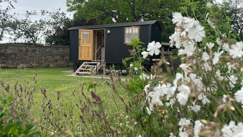 The Shepherds Hut @ Brewood Park Farm