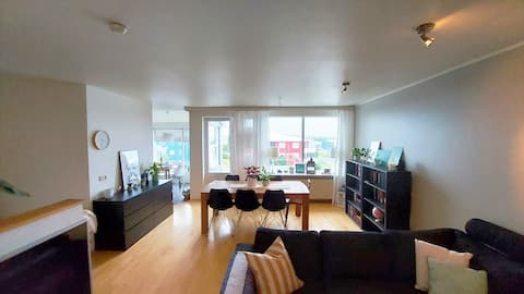 Bright & spacious family apartment in Reykjavík