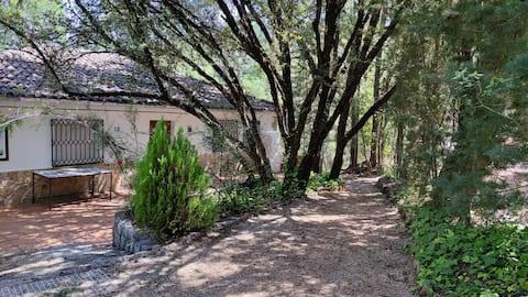 Alojamiento en el corazón de la Sierra de Cazorla