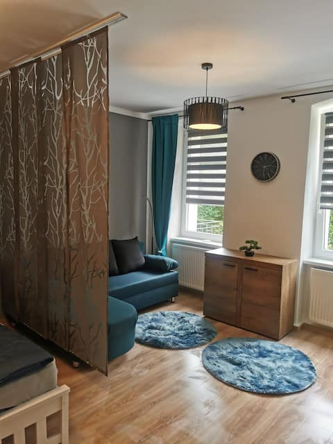 2-3 (4) Persons Apartment, 45m2