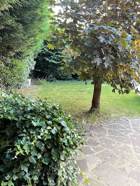 Cosy 3bed retreat near Blenheim Palace, Oxford