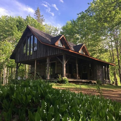 Log cabin with fireplace