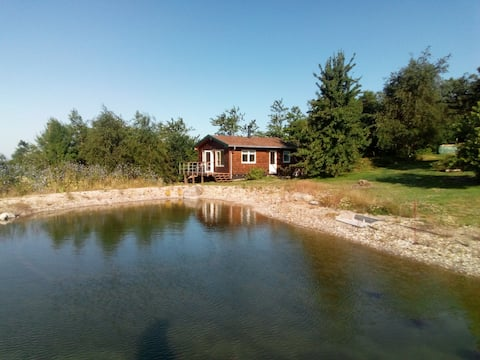 New wooden cabin near nature park Thy