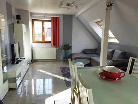 Superbe appartement, jardin proche Strasbourg