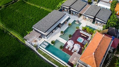 5BD - Ubud Luxury Resort · NOWOŚĆ! Luksusowy 5 BDR Resort z widokiem na siłownię i pole ryżowe