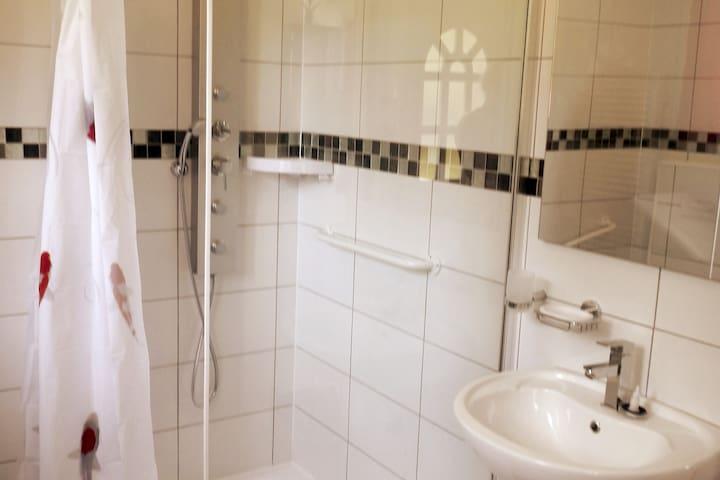 Salle de bains équipé pour personnes ayant des difficultés pour se mouvoir, barres douche , barre wc , espace normalisé fauteuil si besoin , douche hydraumassante. Lavabo avec espace inférieur pour fauteuil
