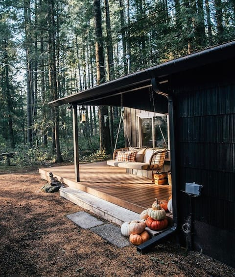Charming Haven in the Woods-Little Chestnut Cabin