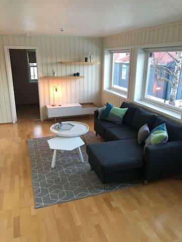 Stue, mot soverom. Stuen har store vindusflater, er luftig og trivelig. Åpen løsning mot kjøkken.  Nyere smartTV flatskjerm (50 tommer). Vanlige TV-kanaler og mulighet for å logge seg inn på feks Netflix. Godt internett inkludert.