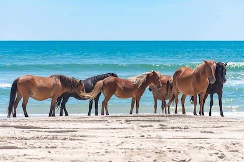 4x4 Swan Beach, Sleeps 8, Wild Horses, Ocean Views