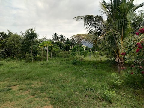 Cheerful 1 bhk Farm Home  in Foot of Yercaud Hill