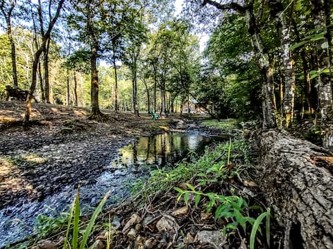 Fancy Hill-Jack Creek Cabin 1 Lil' Rustic Retreat