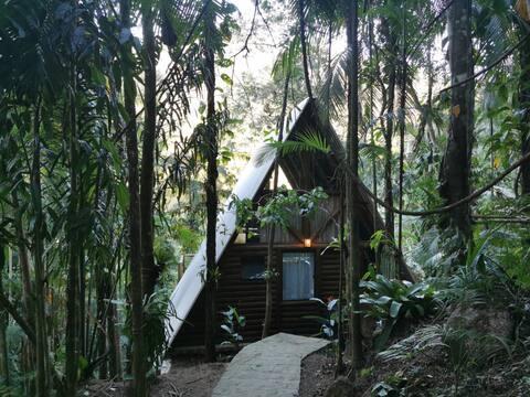 Chalé da Floresta: charme e aconchego na Natureza